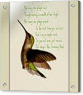 The Hummingbird Acrylic Print