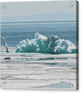 The Ice Elephant Of Silver Islet Acrylic Print