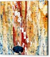 The Imaginary Art Co. Storm Acrylic Print