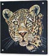 The Jaguar - Acrylic Painting Acrylic Print