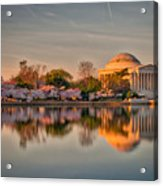 The Jefferson Memorial And Cherry Trees In Bloom Acrylic Print