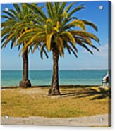 The Joy Of Sea And Palms Acrylic Print