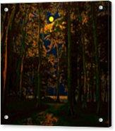 The Jungle Moon Acrylic Print