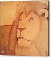 The King Lion Acrylic Print