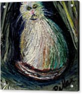 The Kitty Cat Acrylic Print
