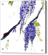 The Ladybird And The Wisteria Acrylic Print