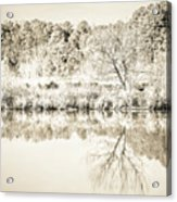 The Lake #47 Acrylic Print