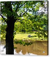The Lake In The Park Acrylic Print