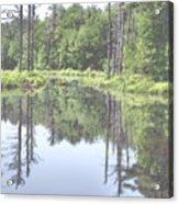 The Lake Tully Acrylic Print
