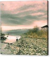The Lake Walker Acrylic Print