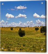 The Land Of The Free Acrylic Print