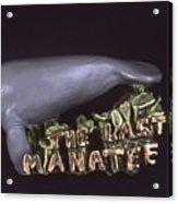 The Last Manatee Acrylic Print