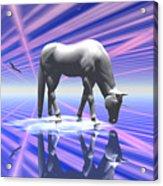 The Last Of The Unicorns 2 Acrylic Print