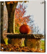 The Last Pumpkin Acrylic Print by Lois Bryan
