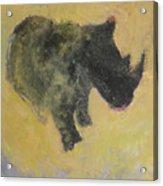 The Last Rhino Acrylic Print