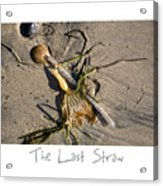 The Last Straw Acrylic Print by Peter Tellone