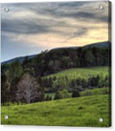 The Late Bloomer Acrylic Print