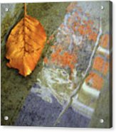The Leaf And The Reflections Acrylic Print