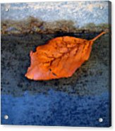 The Leaf On The Stairs Acrylic Print