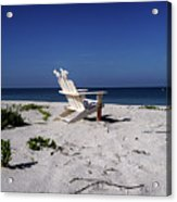 The Life Gp Acrylic Print by Chris Andruskiewicz