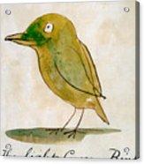 The Light Green Bird Acrylic Print
