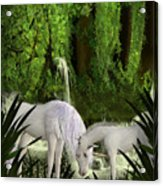 The Lineage Of Unicorns Acrylic Print