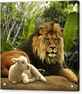 The Lion And The Lamb Acrylic Print