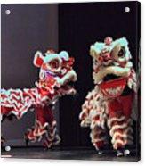 The Lion Dance Camarillo Kung Fu Club Acrylic Print