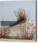 The Little Dune And The White Picket Fence Acrylic Print