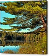 The Little Known Cary Lake Acrylic Print