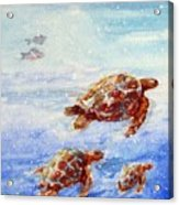 The Loggerheads Catch The Currents Acrylic Print