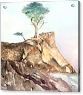 The Lone Cypress-monterey Ca Acrylic Print