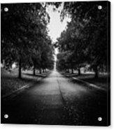 The Lone Walk Acrylic Print