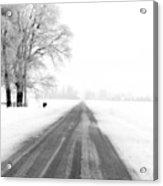 The Long Road Acrylic Print