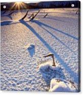 The Long Shadows Of Winter Acrylic Print