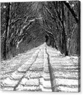 The Long Winter Walk Acrylic Print