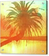 The Loop Palm Textured Acrylic Print