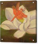 The Lotus And The Dragonfly Acrylic Print