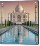 The Love Of Taj Acrylic Print
