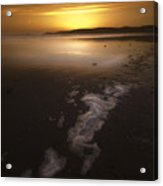 The Low Tide Acrylic Print