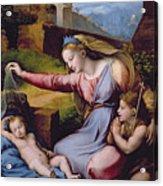 The Madonna Of The Veil Acrylic Print