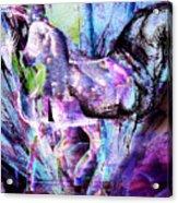 The Magic Of Horses Acrylic Print