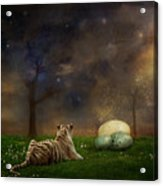 The Magical Of Life Acrylic Print by Martine Roch