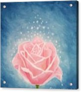 The Magical Pink Rose Acrylic Print