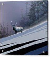 The Magnificent Elk Acrylic Print