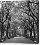 The Mall And The Poets Acrylic Print