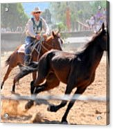 The Man From Snowy River Winner Acrylic Print