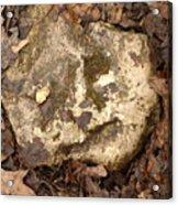The Man In The Rock Acrylic Print
