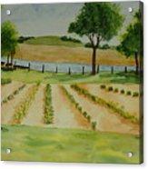 The Mangan Farm  Acrylic Print