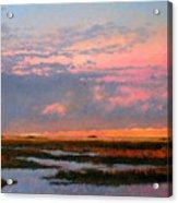 The Marsh  Acrylic Print by Gary Gowans
